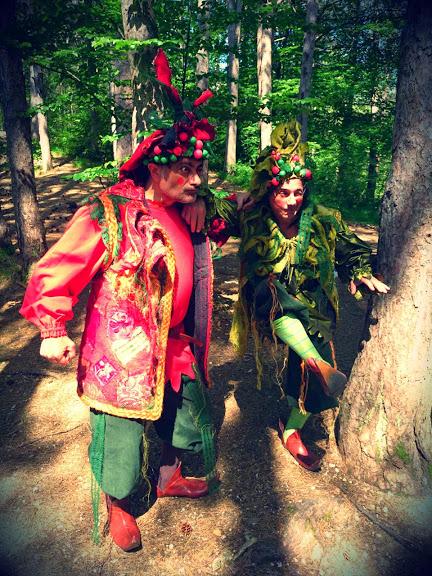 Il bosco delle meraviglie (6)