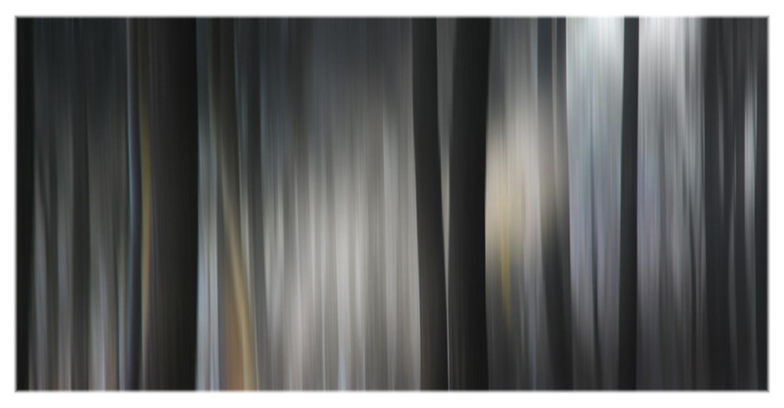 4 wald-akkord
